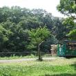 遠雷聞こえる盛夏の多摩動物公園