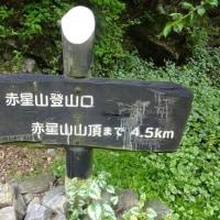 赤星山・豊受山 (5月1日)