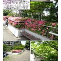 散策 「東京中心部南 248」 御殿山②