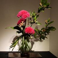 いけばな小原流展 華のおもてなし「白い秋」・・・・安丸 豊弥さんの作品