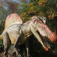 恐竜の探索 P3