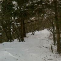 三つ峠登山5