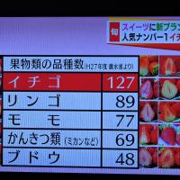 1/14 イチゴの種類の多さ