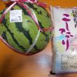 重要無形民俗文化財の鷺舞神事 小京都に鷺の舞