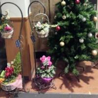 これも クリスマス飾り・・大勢で 手作り? (*^^)v