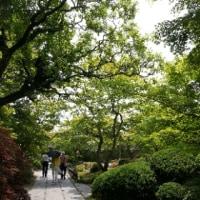 松島~青葉城址 ダメよ~ダメダメあけみちゃん!😄