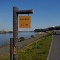 船橋歩こう会「第28回江戸川チャレンジウオーク」10km記 (3/25)