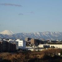 丹沢山系も雪景色