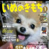 プリンちゃん~(動画) &可愛い本の表紙
