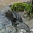 梅雨最中?