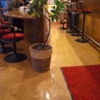 創業1958年の京都駅前 喫茶みわく