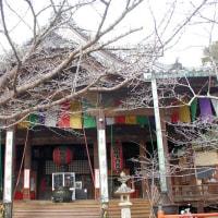 紀三井寺 大観音・本堂など 2017012