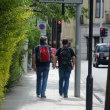 アイルランドの旅…人は何のために生きるの?『世界共通の平和』