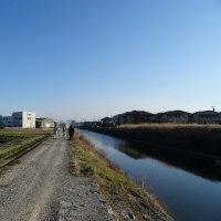古川堤防の清掃