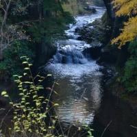 不思議な濃溝の滝