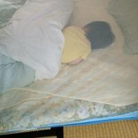 蚊帳にて思う