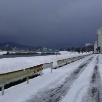 33年ぶりの大雪が