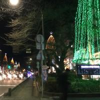 今夜は大学通りのイルミネーションを観て「さくらホール」へ 小川ひろみさんと市政を語る市民集会