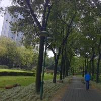 ラスト珠江公園