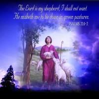 1月14日(土)の聖言