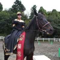 Autumn Horse Show '16 追加画像