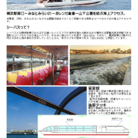 第10回海から中華街を目指してみましょう 「中華街・横浜散策と食事(ランチ)を楽しむ」PART3