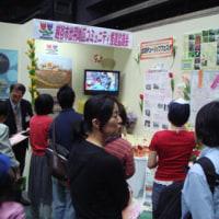 ジャパンフラワーフェスティバルさいたま2007