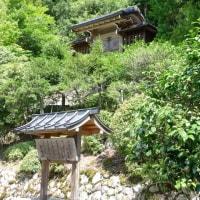 59 アチャコの京都日誌 再びの京都