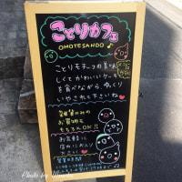 ことりカフェ表参道で『オカメインコ』を食べる?!ミミズクの小憎らしさがキュート💛