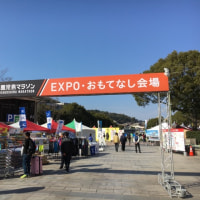 鹿児島マラソン2017