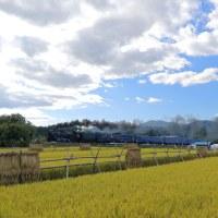稲刈りのころ(釜石C58)