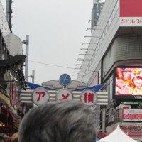 第23回 東京秘境を歩こう会(其の三) 本物チゲを食す ・・・・!!!      № 5,263