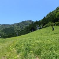 氷ノ山 仙谷コース~三の丸周回