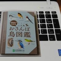 おさんぽ鳥図鑑・・・