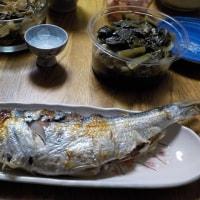 春告げ魚を食べる