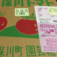 3月20日 美味しいトマト