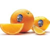 輸入レモン
