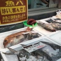 瀬戸内の旬の高級なお魚といえば‥「#マナカツオ」一匹丸ごと「#魚八」様で‥