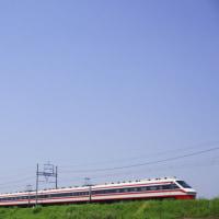 麦畑を走る東武列車。
