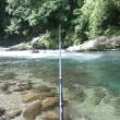 7月16日 亀尾島川で鮎釣り!