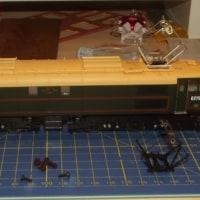 OO Heljan BR Class 77 (EM2) Exchange the pantograh