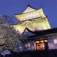 ハイソフト「日本の名城」5枚目