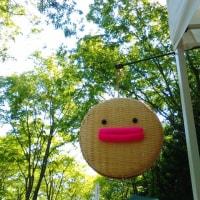 行きます福島県伊達市♪5月27日28日「モノ作りびとフェアinつきだて花工房」♪