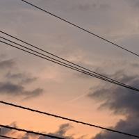 4/25 今朝 きょうは天気いいみたい