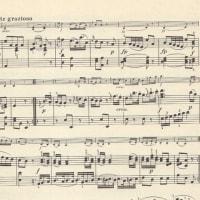 2017年7月11日のレクチャーコンサートはモーツァルトのヴァイオリンソナタをプロと共演!勉強します