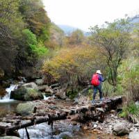 くじゅう山の紅葉 2016年は・・? ~ 赤川コースは 熊本地震のため崩落個所あり