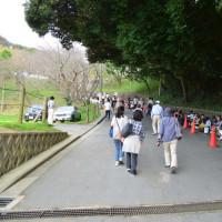 宮地嶽神社の光の道(見れませんでした)