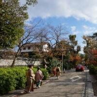 宇治興聖寺へ