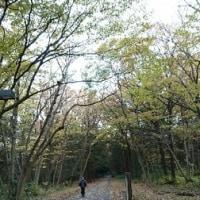 5回中山2日目(完全休予う日)・おっタイム!