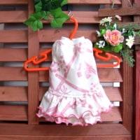 ワンコ用の春服